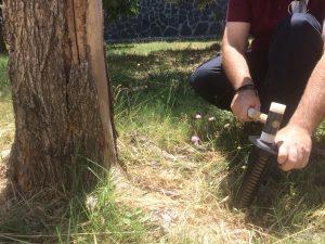 estación termita suelo