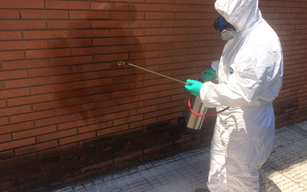 Insecticidas y complementos para el control de insectos